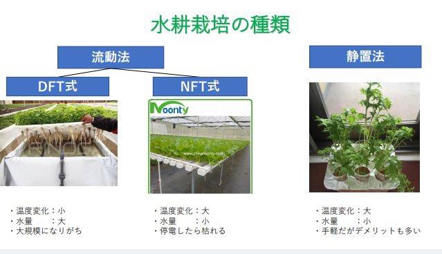 水耕栽培の種類
