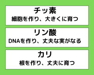 植物3要素